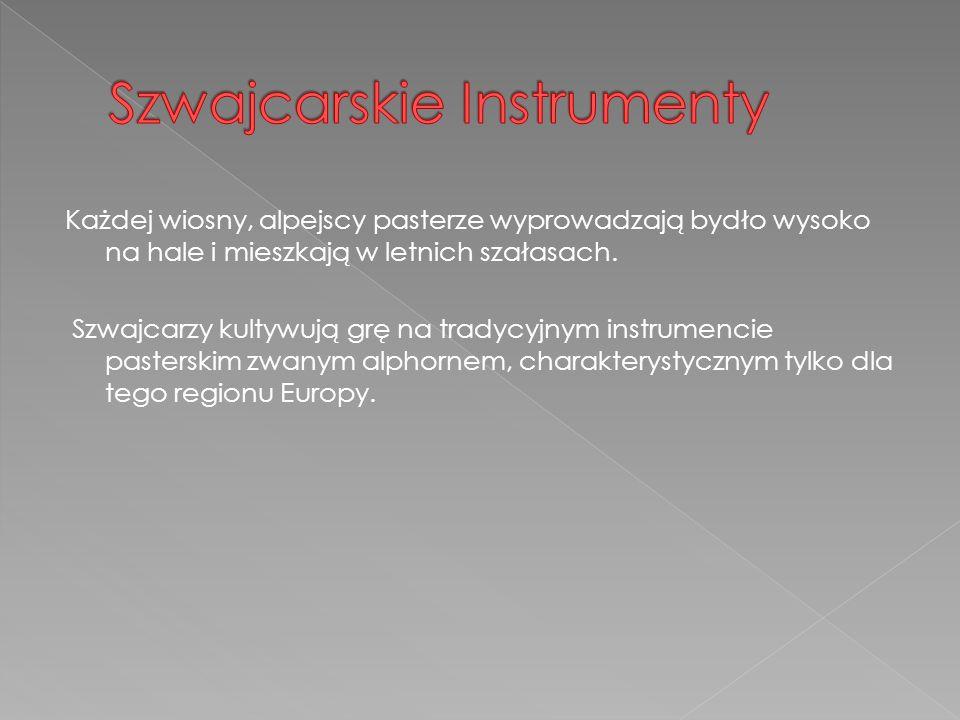 Szwajcarskie Instrumenty