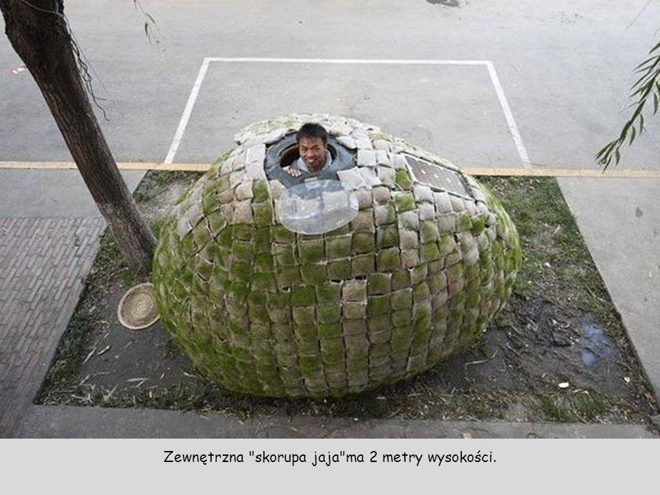 Zewnętrzna skorupa jaja ma 2 metry wysokości.