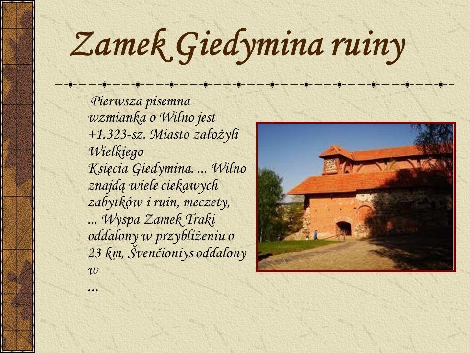 Zamek Giedymina ruiny