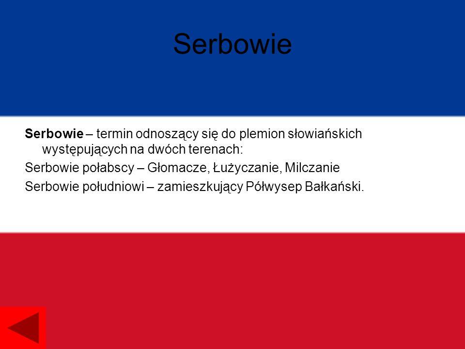 Serbowie Serbowie – termin odnoszący się do plemion słowiańskich występujących na dwóch terenach: