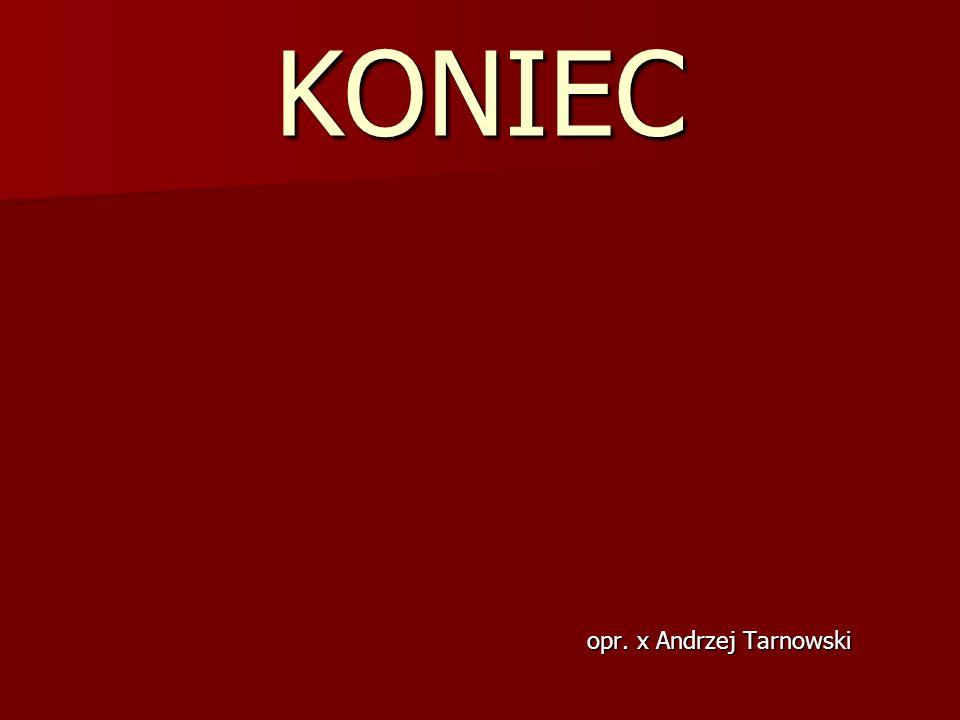 KONIEC opr. x Andrzej Tarnowski
