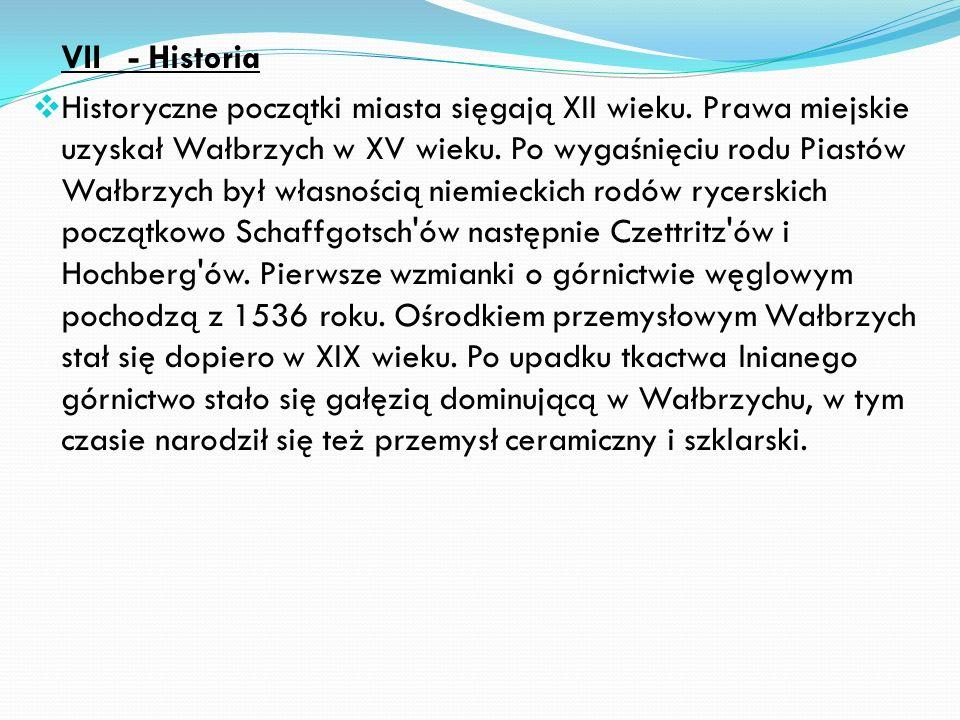VII - Historia