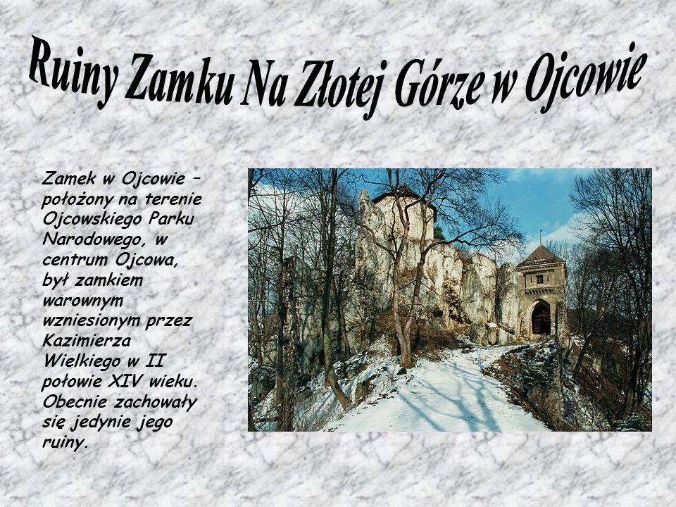 Ruiny Zamku Na Złotej Górze w Ojcowie