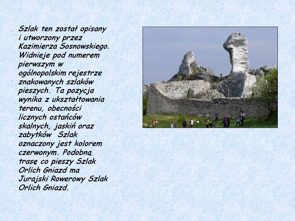 Szlak ten został opisany i utworzony przez Kazimierza Sosnowskiego