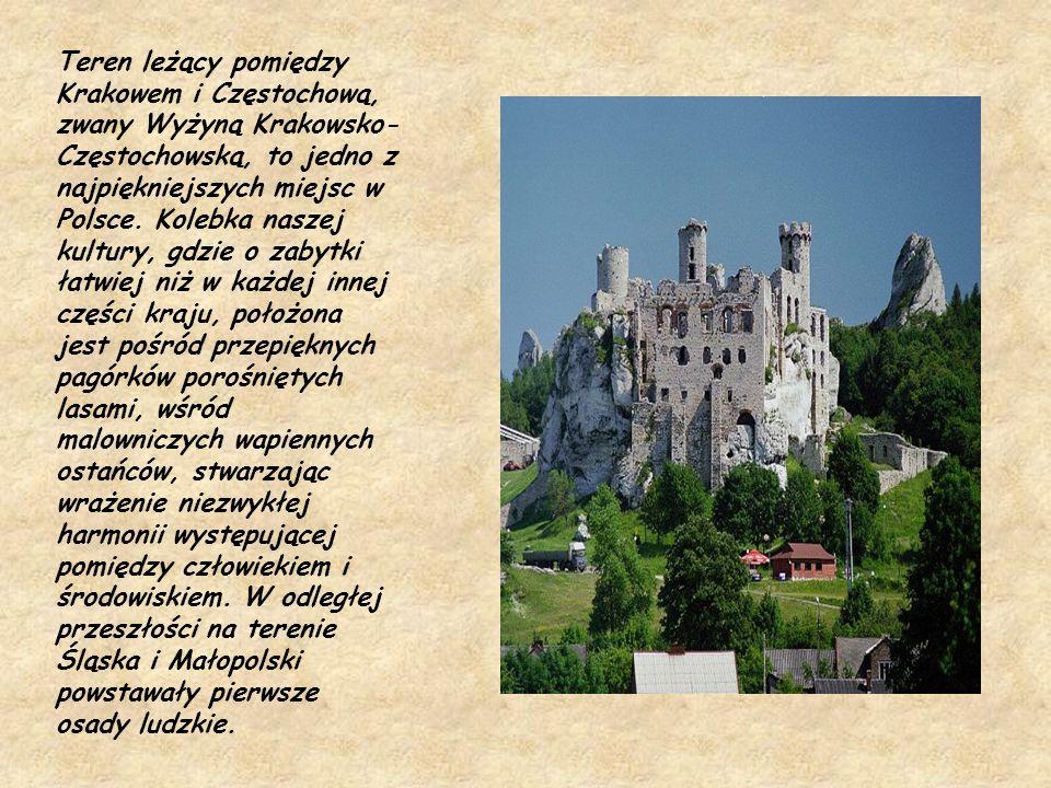 Teren leżący pomiędzy Krakowem i Częstochową, zwany Wyżyną Krakowsko-Częstochowską, to jedno z najpiękniejszych miejsc w Polsce.