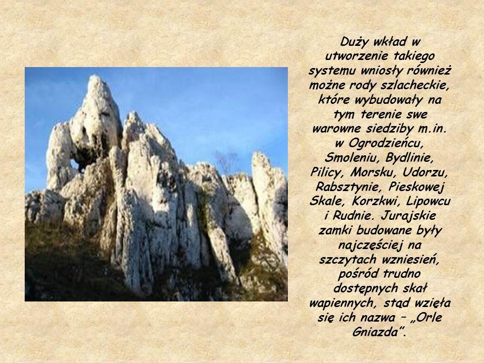 Duży wkład w utworzenie takiego systemu wniosły również możne rody szlacheckie, które wybudowały na tym terenie swe warowne siedziby m.in.