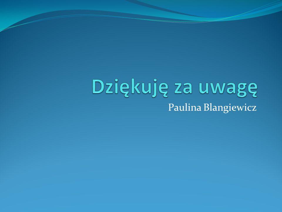 Dziękuję za uwagę Paulina Blangiewicz