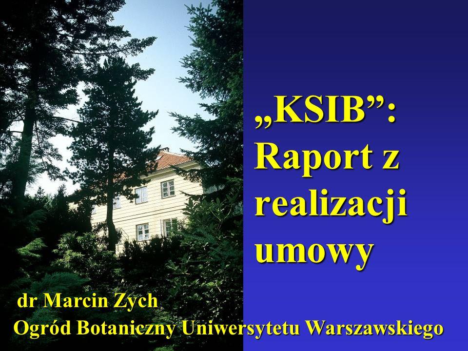 """""""KSIB : Raport z realizacji umowy"""