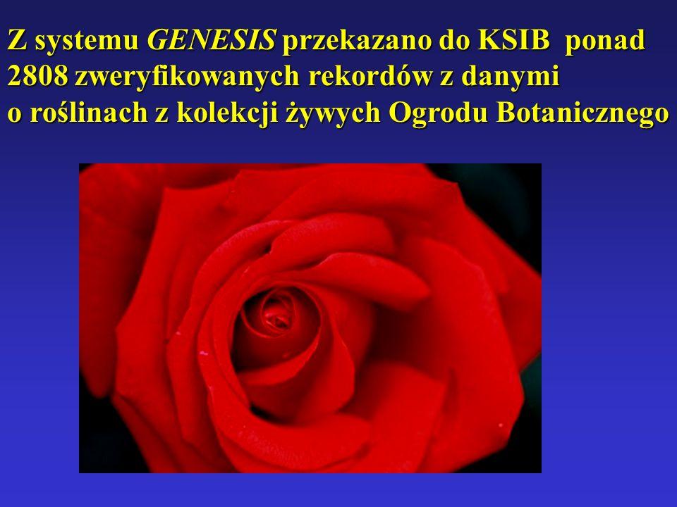 Z systemu GENESIS przekazano do KSIB ponad 2808 zweryfikowanych rekordów z danymi