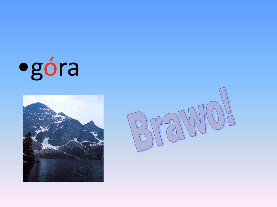 góra Brawo!