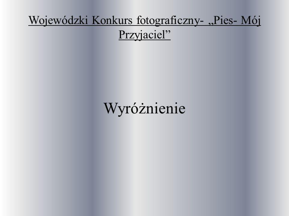 """Wojewódzki Konkurs fotograficzny- """"Pies- Mój Przyjaciel"""