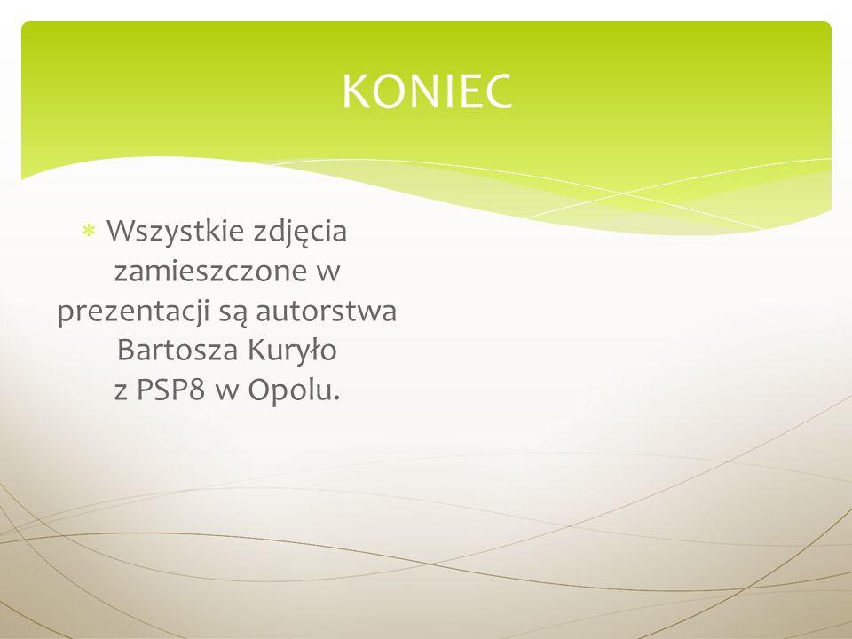 KONIEC Wszystkie zdjęcia zamieszczone w prezentacji są autorstwa Bartosza Kuryło z PSP8 w Opolu.
