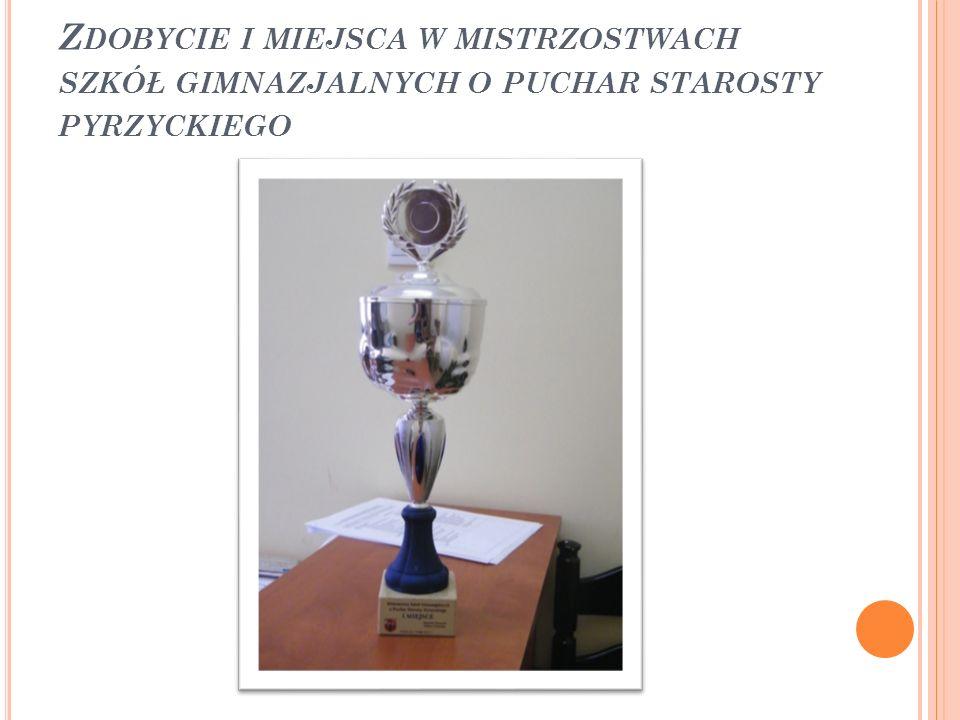 Zdobycie i miejsca w mistrzostwach szkół gimnazjalnych o puchar starosty pyrzyckiego