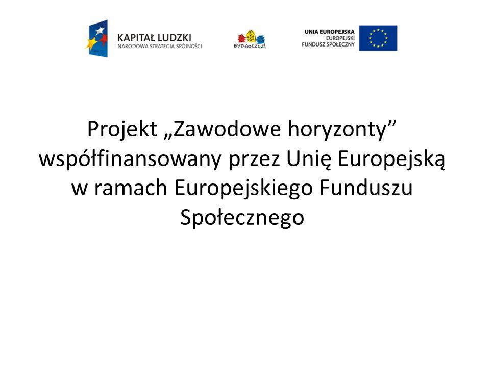 """Projekt """"Zawodowe horyzonty współfinansowany przez Unię Europejską w ramach Europejskiego Funduszu Społecznego"""