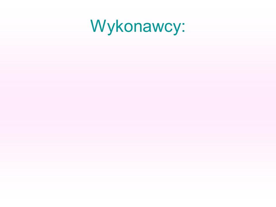Wykonawcy: Rafał Hiszpański Rafał Papciakowski