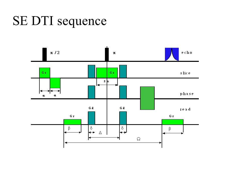 SE DTI sequence