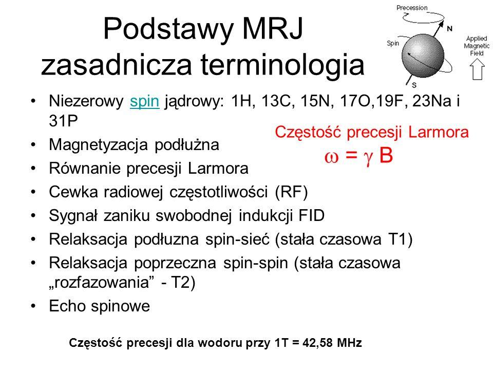 Podstawy MRJ zasadnicza terminologia