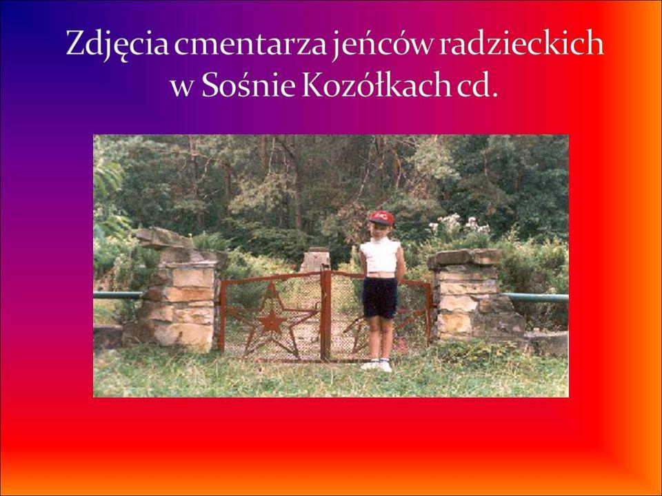 Zdjęcia cmentarza jeńców radzieckich w Sośnie Kozółkach cd.