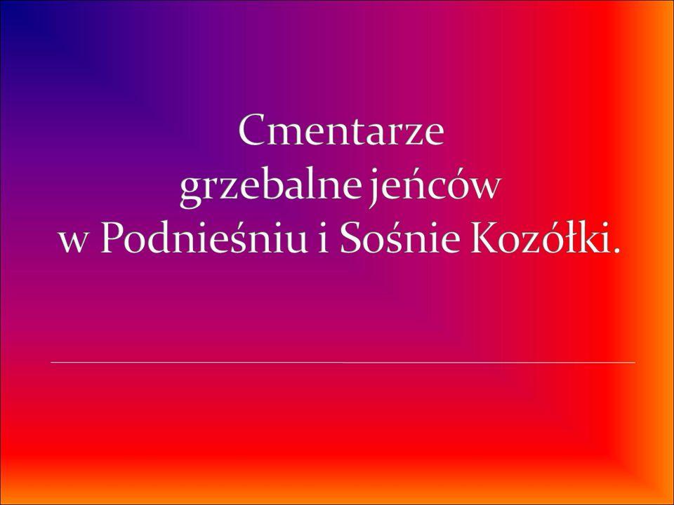 Cmentarze grzebalne jeńców w Podnieśniu i Sośnie Kozółki.