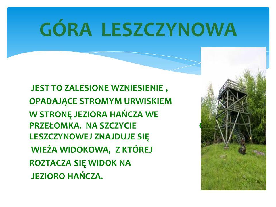 GÓRA LESZCZYNOWA