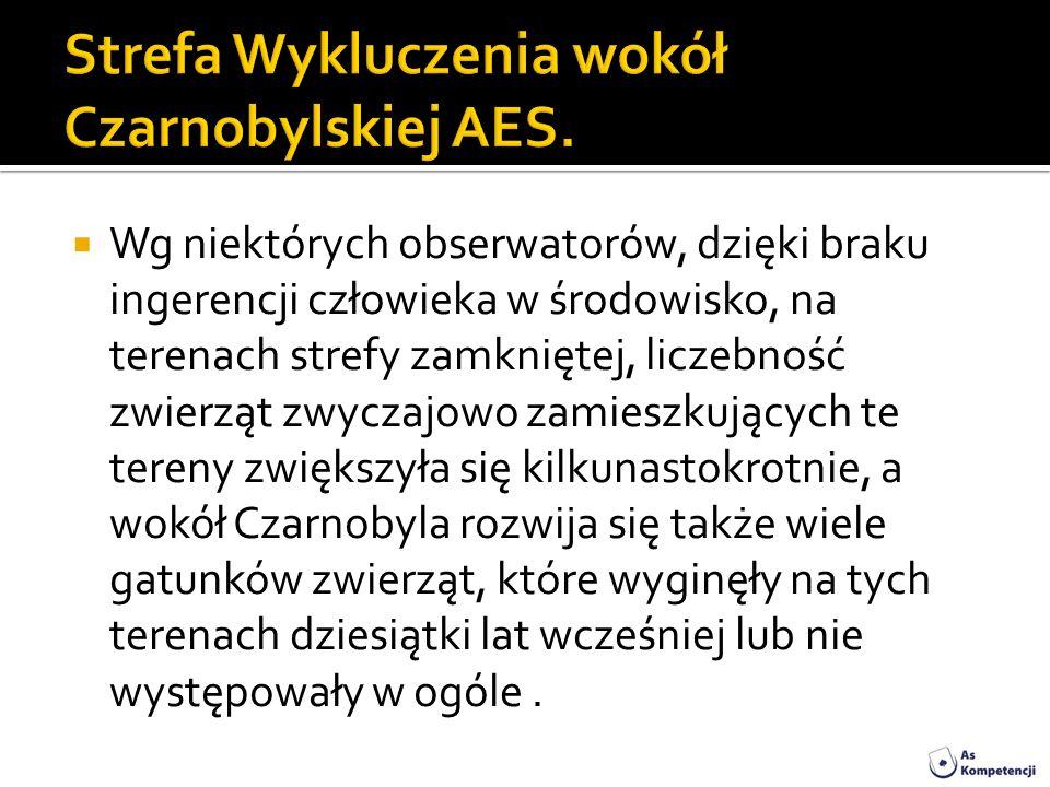 Strefa Wykluczenia wokół Czarnobylskiej AES.