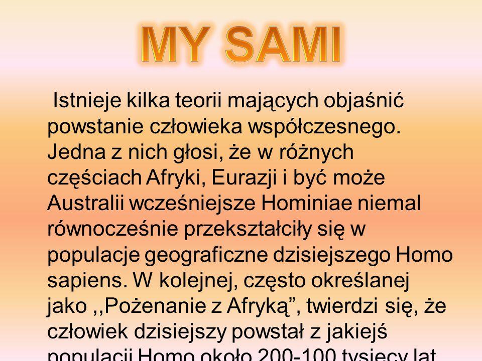 MY SAMI