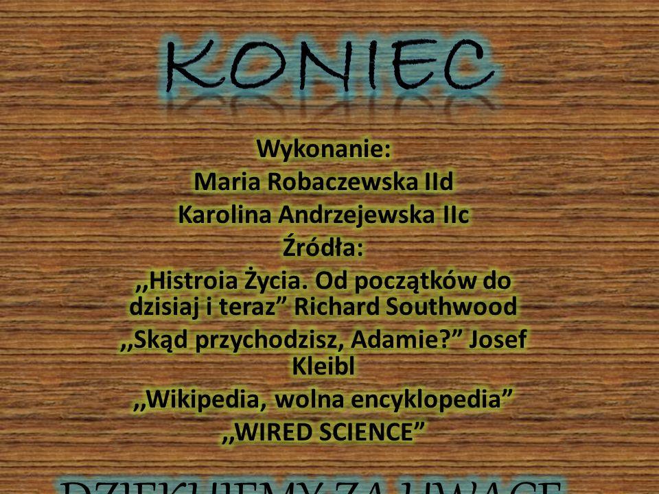 KONIEC DZIĘKUJEMY ZA UWAGĘ Wykonanie: Maria Robaczewska IId