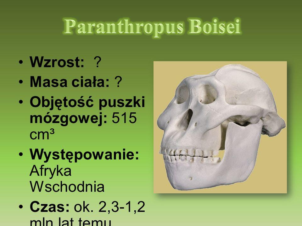 Paranthropus Boisei Wzrost: Masa ciała:
