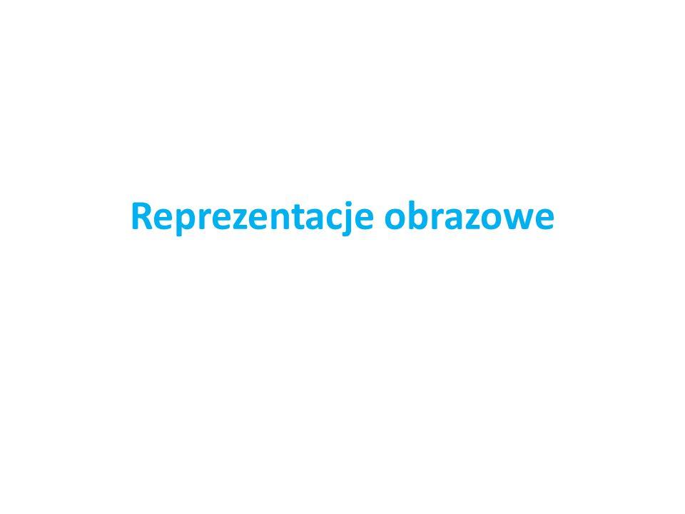 Reprezentacje obrazowe
