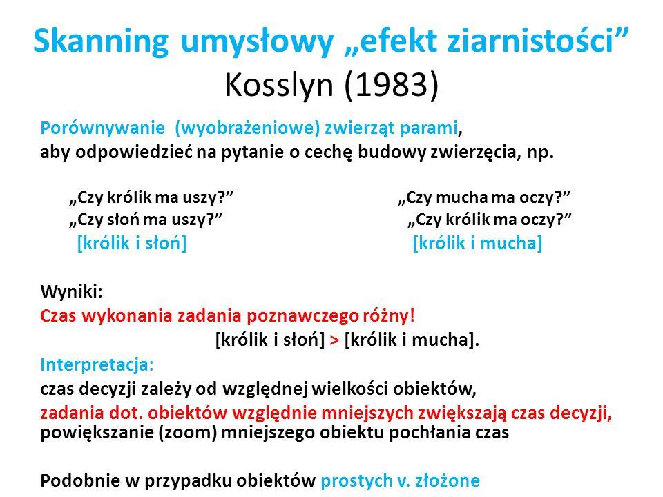 """Skanning umysłowy """"efekt ziarnistości Kosslyn (1983)"""