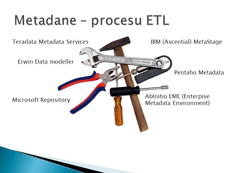 Metadane – procesu ETL Teradata Metadata Services