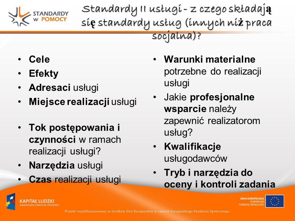 Standardy II usługi - z czego składają się standardy usług (innych niż praca socjalna)