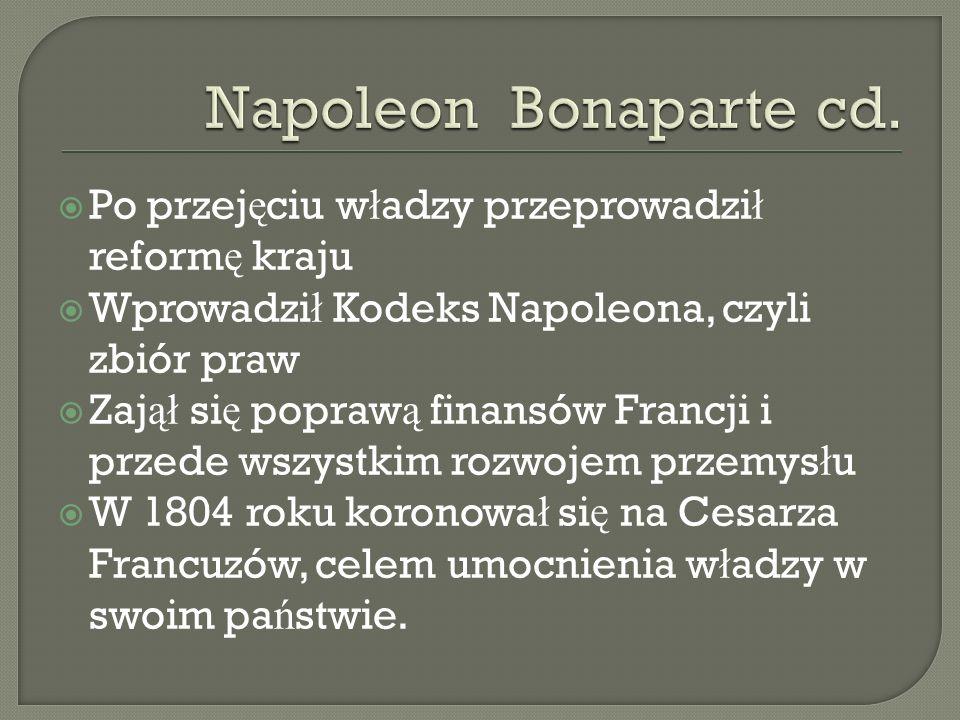 Napoleon Bonaparte cd. Po przejęciu władzy przeprowadził reformę kraju