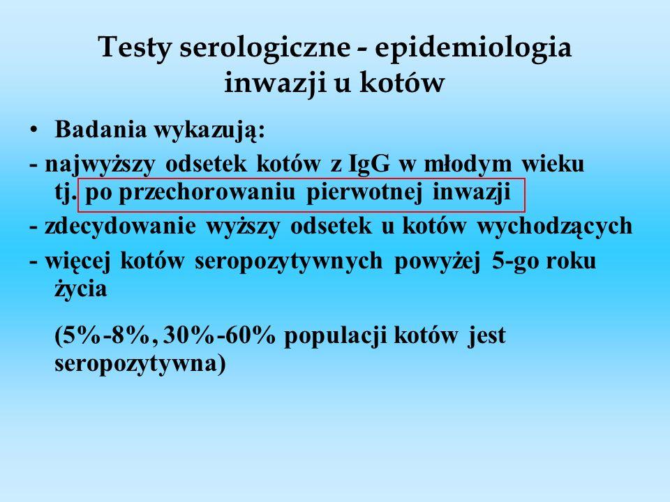 Testy serologiczne - epidemiologia inwazji u kotów