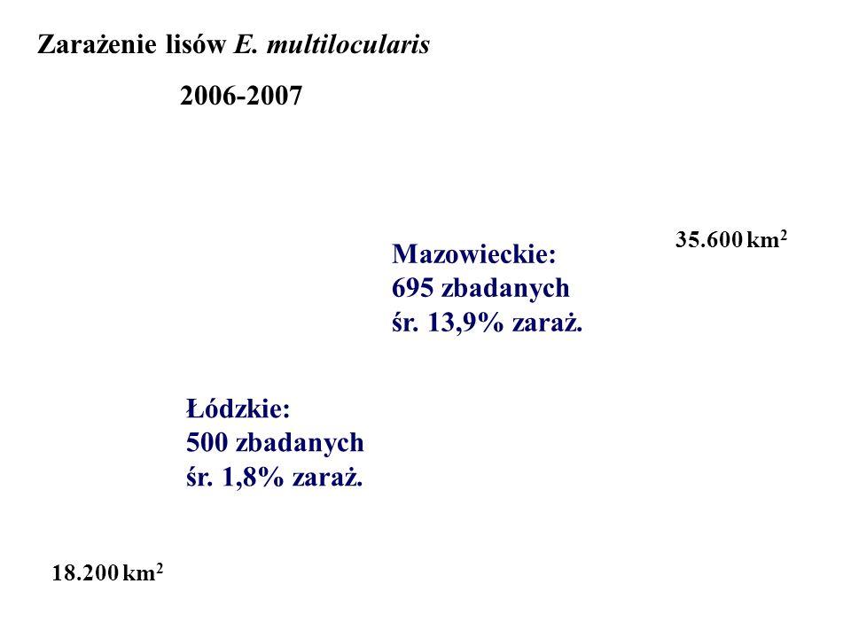 Zarażenie lisów E. multilocularis 2006-2007