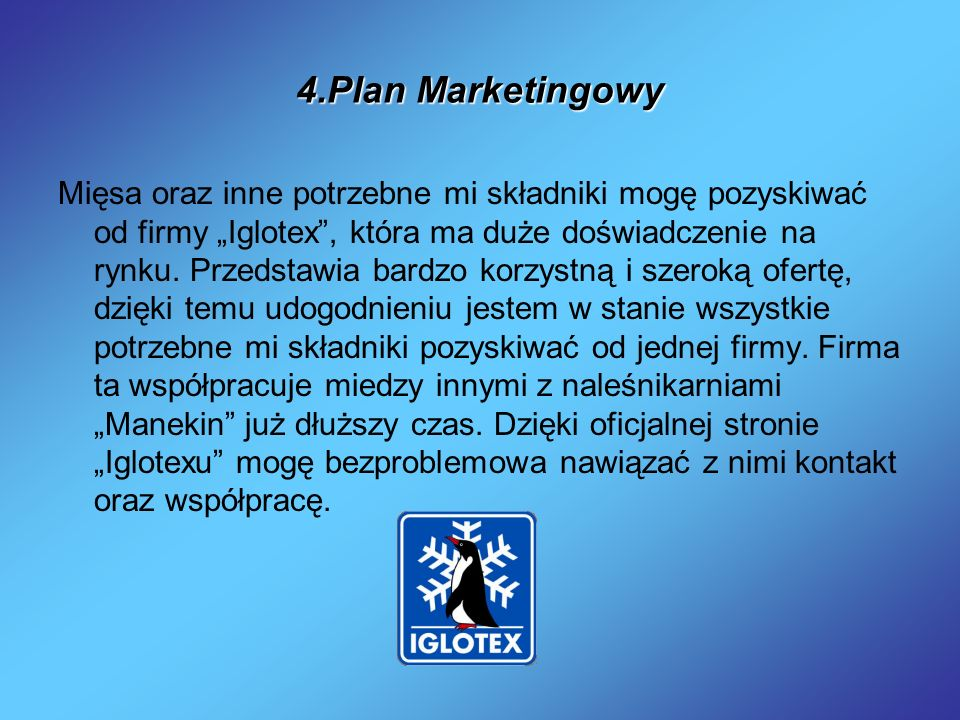 4.Plan Marketingowy