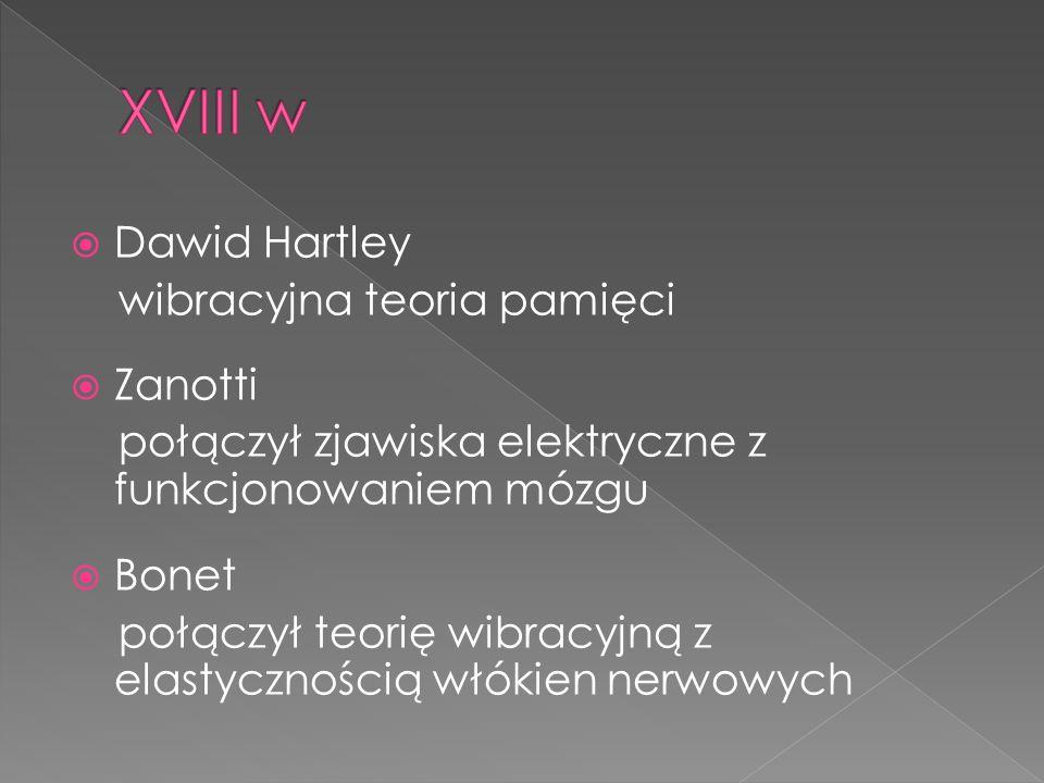 XVIII w Dawid Hartley wibracyjna teoria pamięci Zanotti