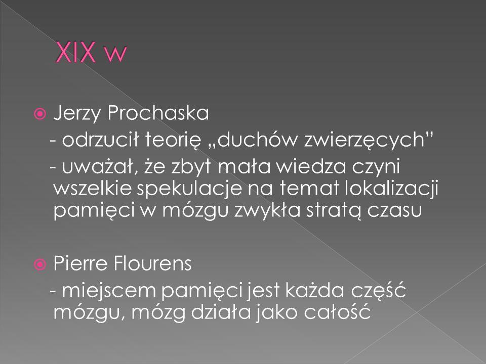 """XIX w Jerzy Prochaska - odrzucił teorię """"duchów zwierzęcych"""
