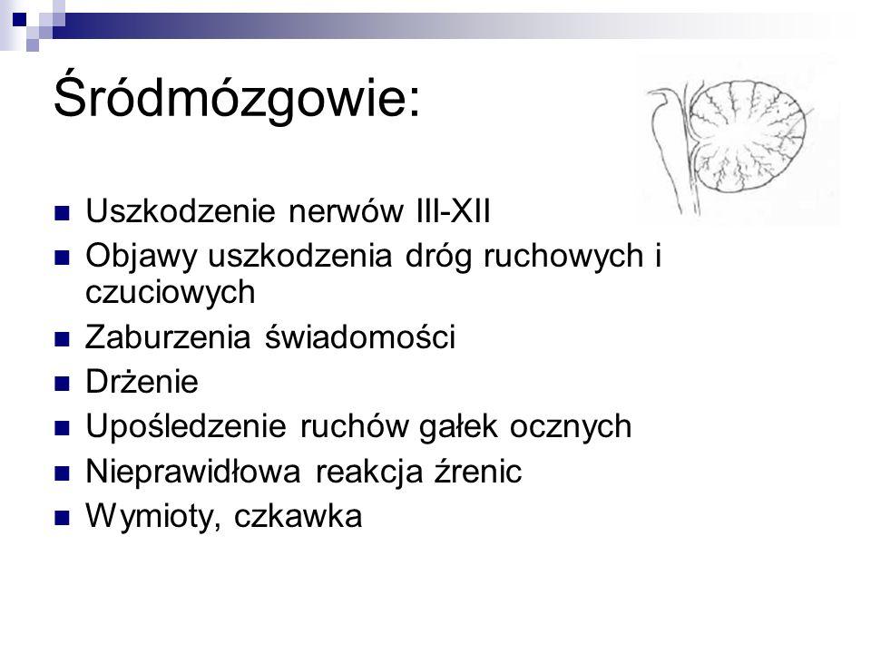 Śródmózgowie: Uszkodzenie nerwów III-XII
