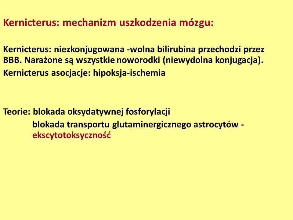 Kernicterus: mechanizm uszkodzenia mózgu: