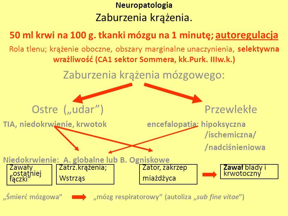 Neuropatologia Zaburzenia krążenia.