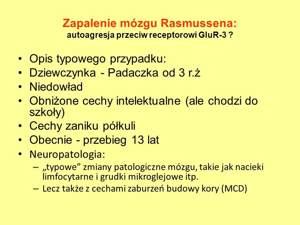 Zapalenie mózgu Rasmussena: autoagresja przeciw receptorowi GluR-3