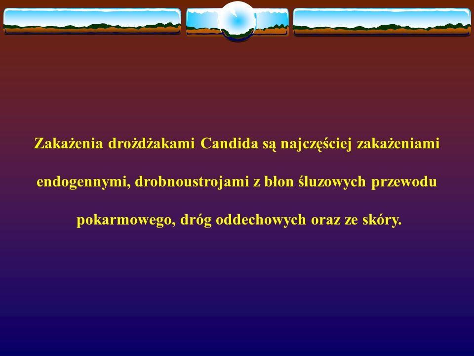 Zakażenia drożdżakami Candida są najczęściej zakażeniami