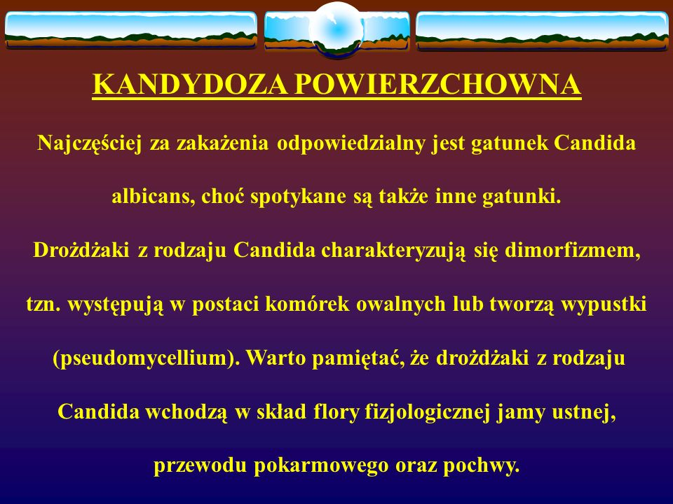 KANDYDOZA POWIERZCHOWNA