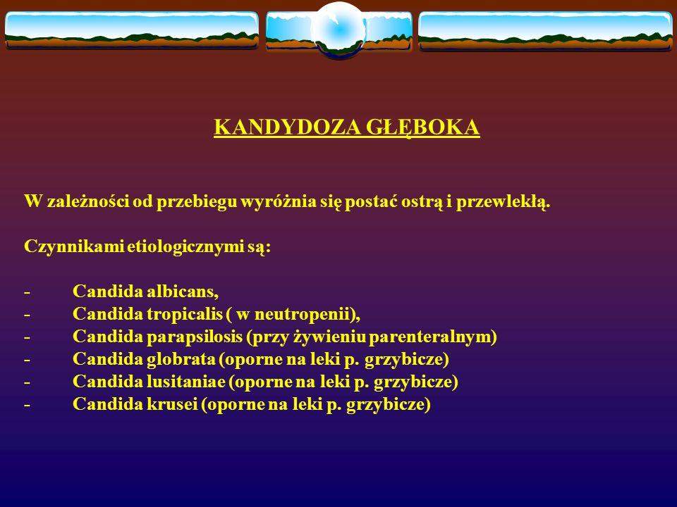 KANDYDOZA GŁĘBOKA W zależności od przebiegu wyróżnia się postać ostrą i przewlekłą. Czynnikami etiologicznymi są: