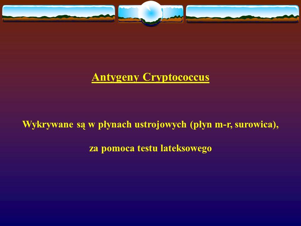 Antygeny Cryptococcus