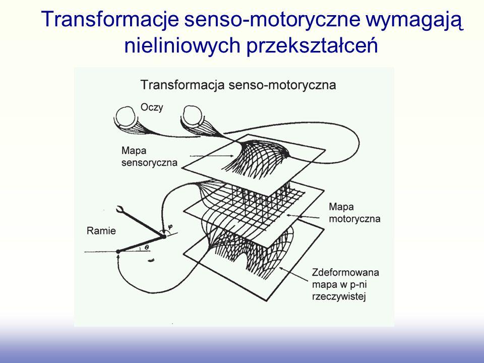 Transformacje senso-motoryczne wymagają nieliniowych przekształceń
