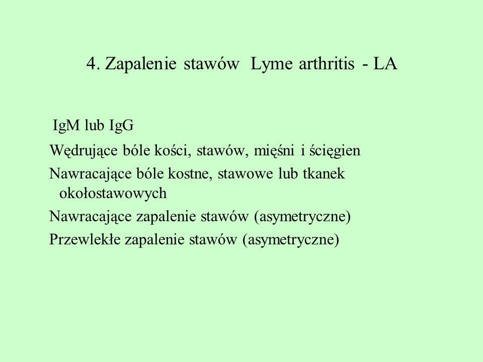4. Zapalenie stawów Lyme arthritis - LA