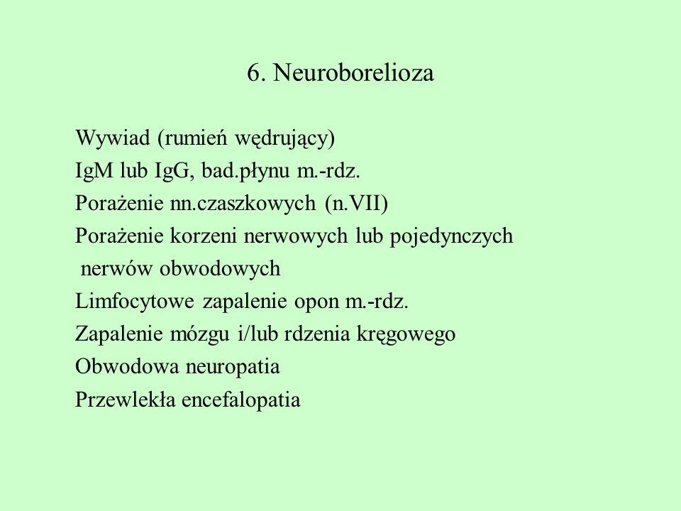 6. Neuroborelioza Wywiad (rumień wędrujący)