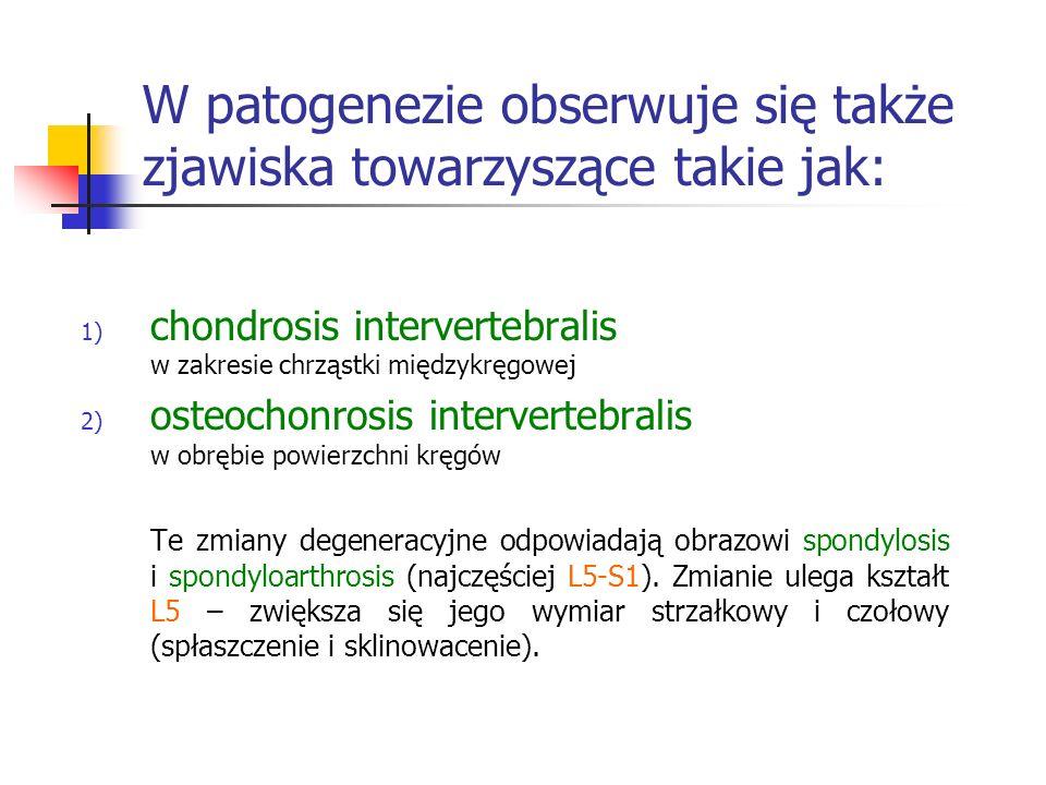 W patogenezie obserwuje się także zjawiska towarzyszące takie jak: